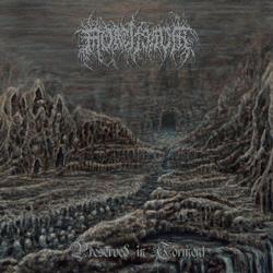 Mortiferum - Preserved In Torment - Vinyl